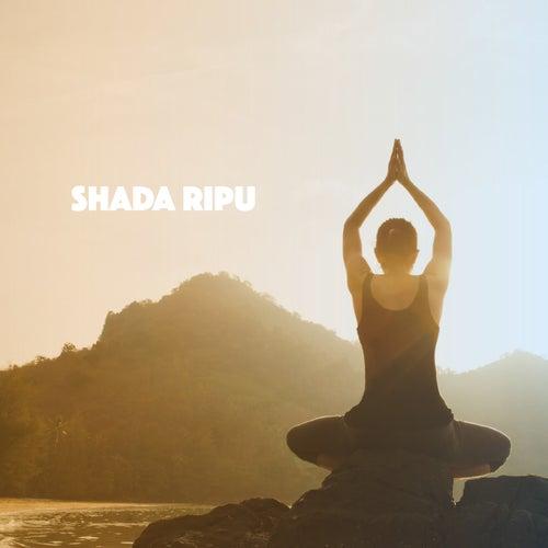 Shada Ripu by Various Artists