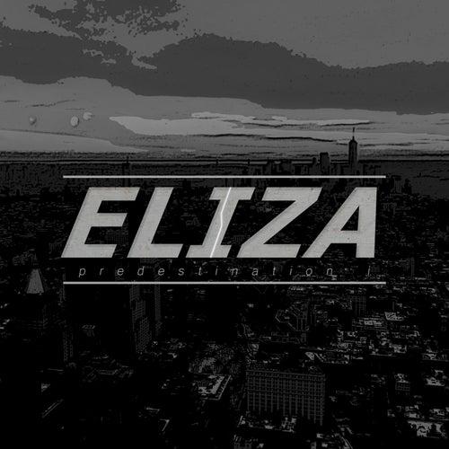 Predestination I by Eliza