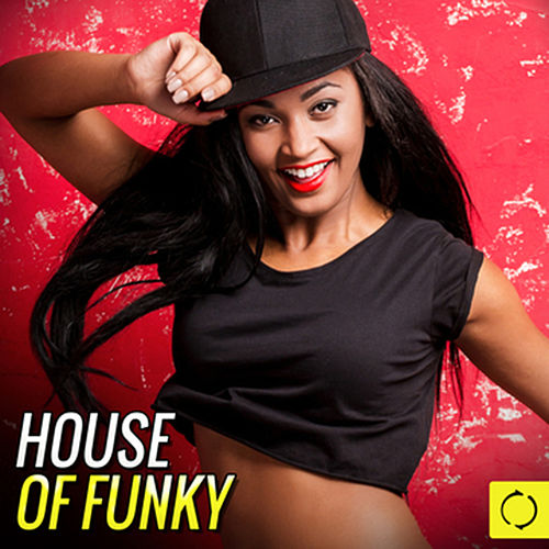 House of Funky by Various Artists
