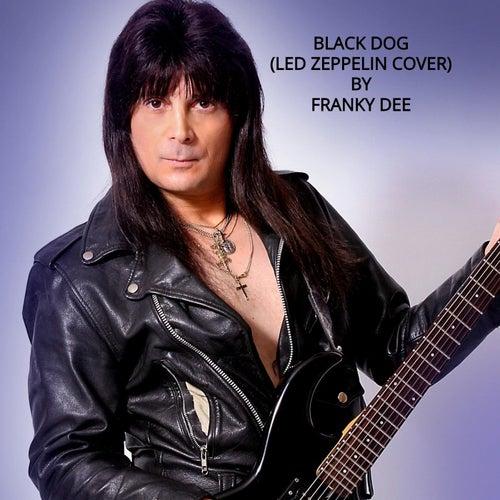Black Dog by Franky Dee