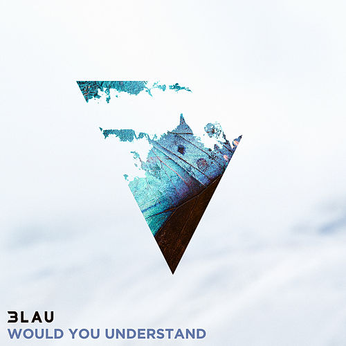 Would You Understand von 3LAU