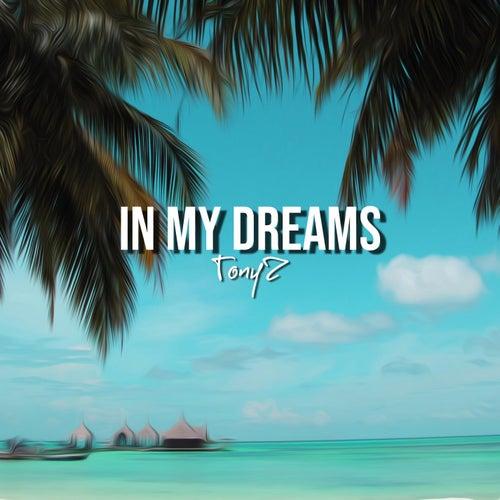 In My Dreams de Tony Z