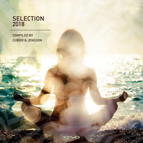 Selection 2018 de Various Artists