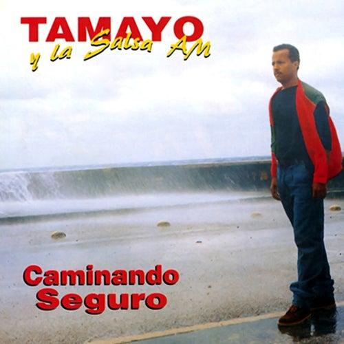 Caminando seguro (Remasterizado) by Tamayo y su Salsa AM