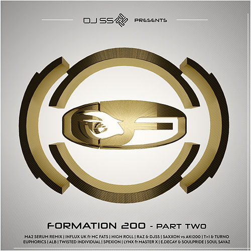 DJ SS Presents: Formation 200, Pt. 2 de Various Artists