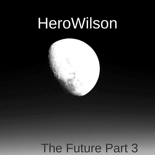 The Future Part 3 by HeroWilson