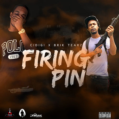 Firing Pin - Single by Brik Tearz