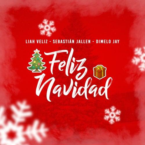 Feliz Navidad von Liah Veliz