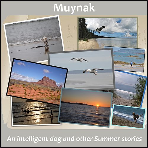 An Intelligent Dog and Other Summer Stories by Muynak
