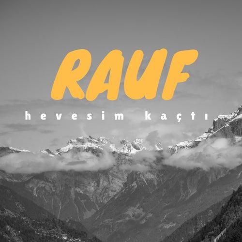 Hevesim Kaçtı von Rauf