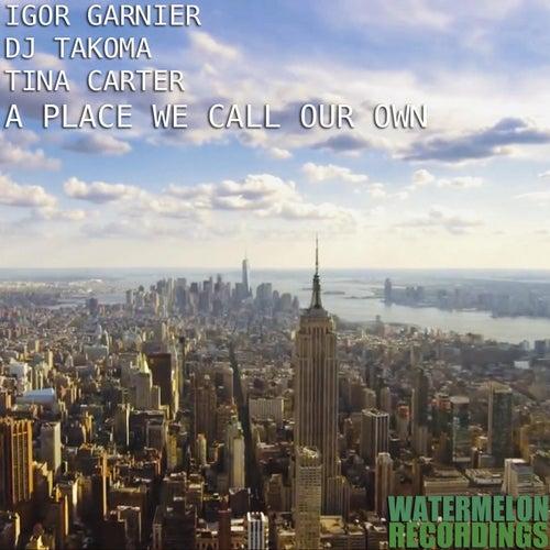 A Place We Call Our Own by Igor Garnier & DJ Takoma