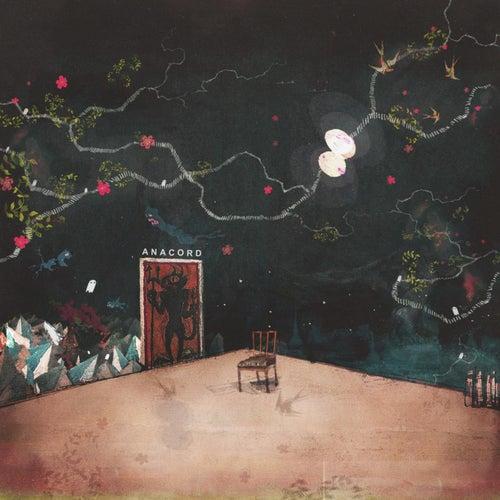 Anacord von Amina