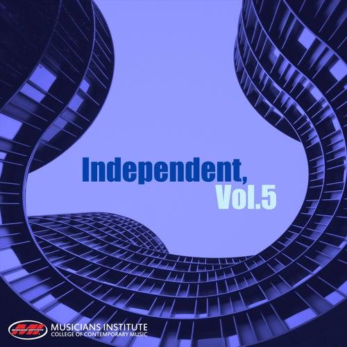 Independent, Vol. 5 de Various Artists