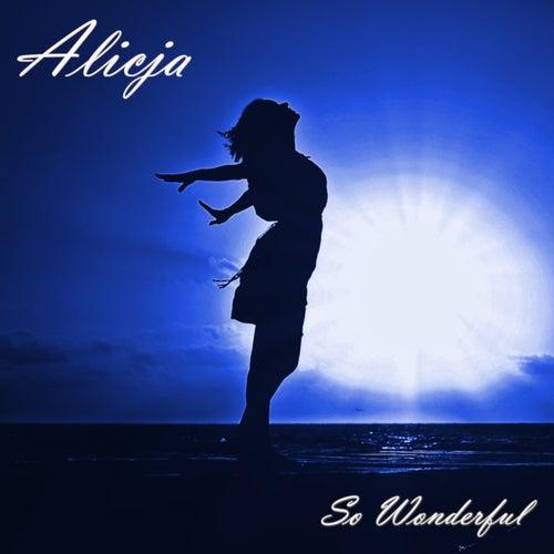 So Wonderful by Alicja