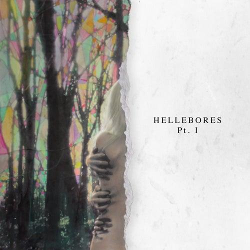 Hellebores, Pt. I by Niights