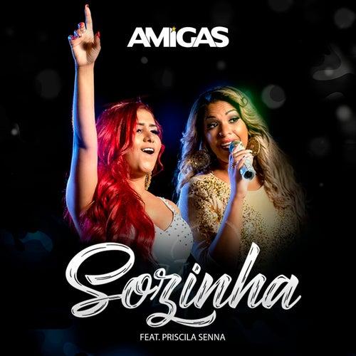 Sozinha (Ao Vivo) von AmigasDoBrega