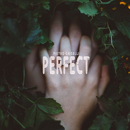 Perfect by Pietro Ghiselli
