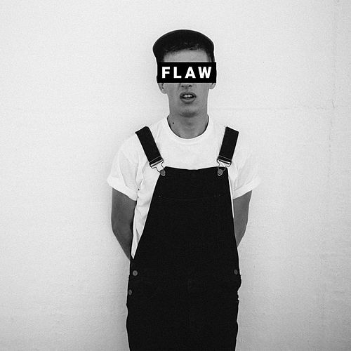 Flaw by Shelter Boy