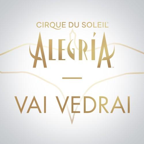 Vai Vedrai de Cirque du Soleil