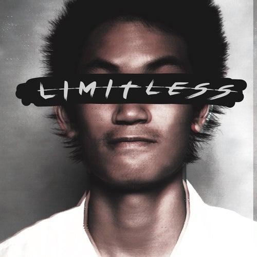 Limitless de Riddo