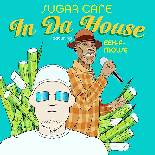 In da House by Sugar Cane