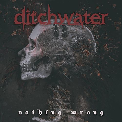 Nothing Wrong by Ditchwater