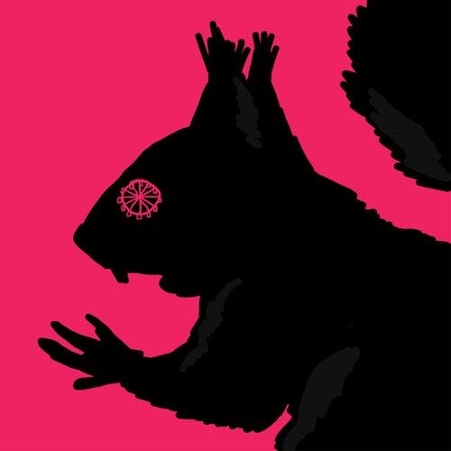 Orava von Musta Hanhi