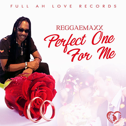 Perfect One for Me by Reggae Max