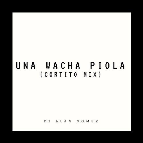 Una Wacha Piola (Cortito Mix) de DJ Alan Gomez