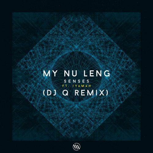 Senses (DJ Q Remix) van My Nu Leng