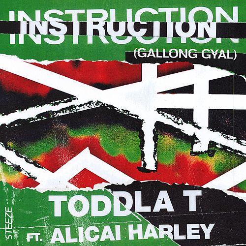 Instruction (Gallong Gyal) by Toddla T