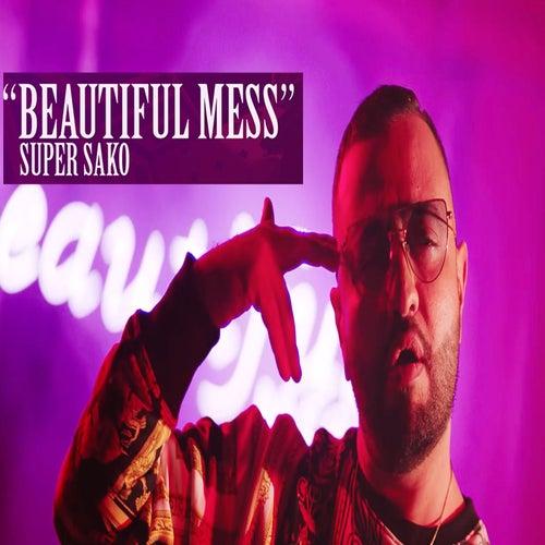 Beautiful Mess by Super Sako