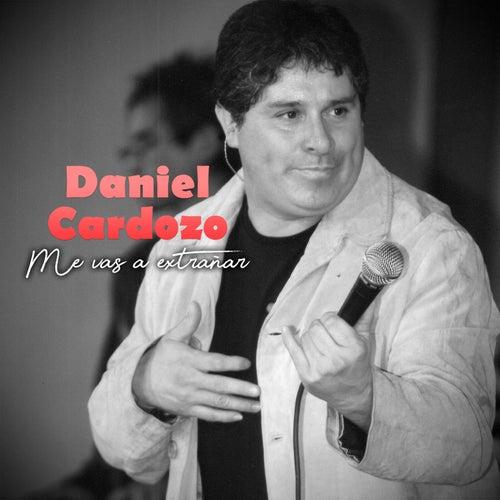 Me Vas a Extrañar de Daniel Cardozo