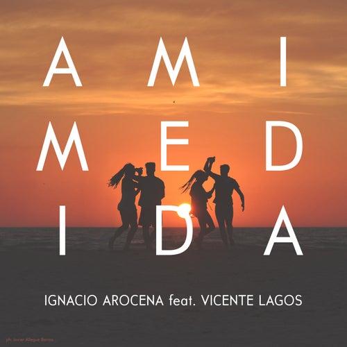 A Mi Medida (feat. Vicente Lagos) de Ignacio Arocena