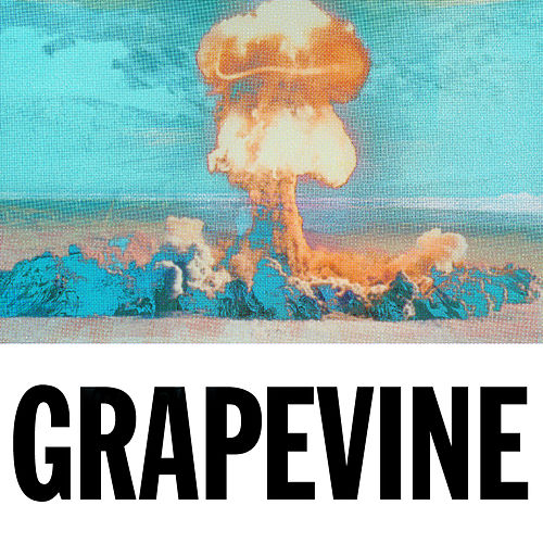Grapevine (The Remixes) de Tiësto