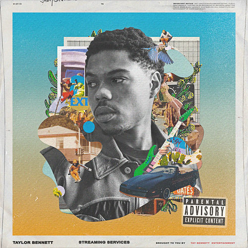 Streaming Services by Taylor Bennett