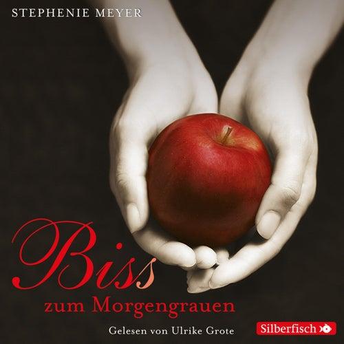 Biss zum Morgengrauen von Stephenie Meyer