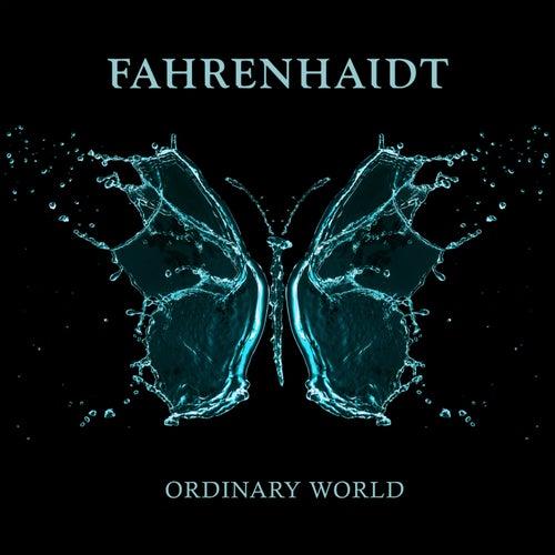 Ordinary World von Fahrenhaidt