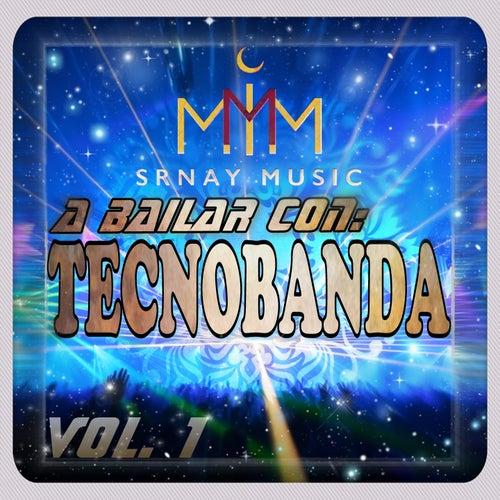 A Bailar Con TecnoBanda, Vol. 1 de Various Artists