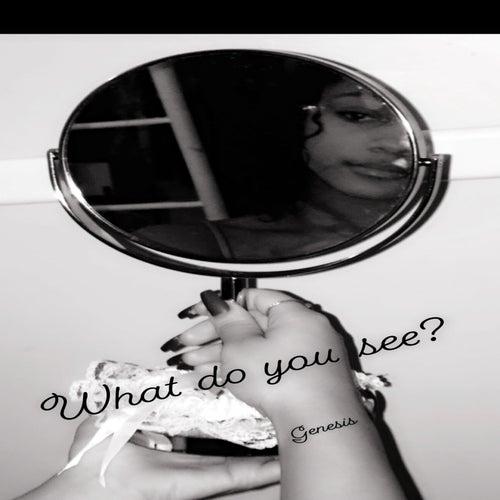 What Do You See von Genesis