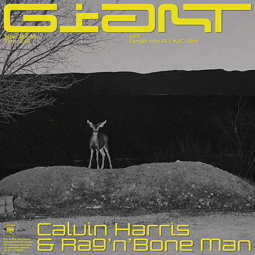Giant van Calvin Harris & Rag'n'Bone Man