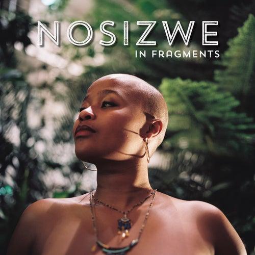 In Fragments by Nosizwe
