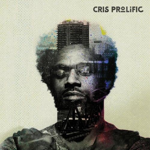 Find Me by Cris Prolific (1)