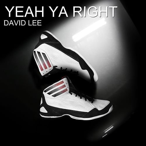 Yeah Ya Right by David Lee