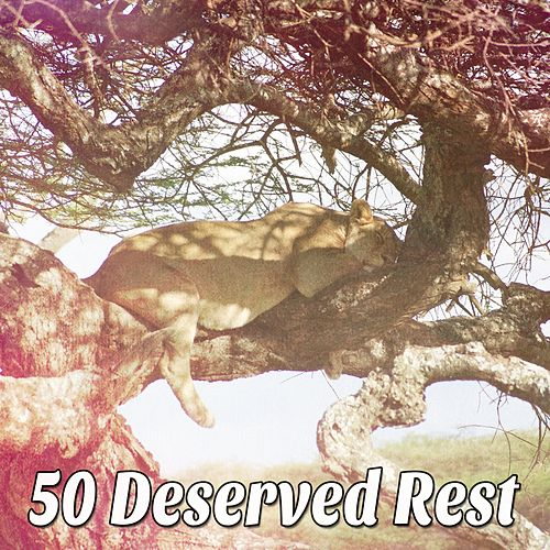 50 Deserved Rest de Water Sound Natural White Noise