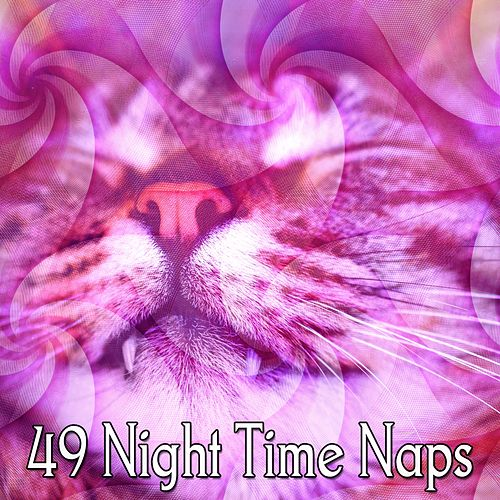 49 Night Time Naps by S.P.A