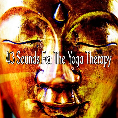 43 Sounds For The Yoga Therapy by Asian Traditional Music