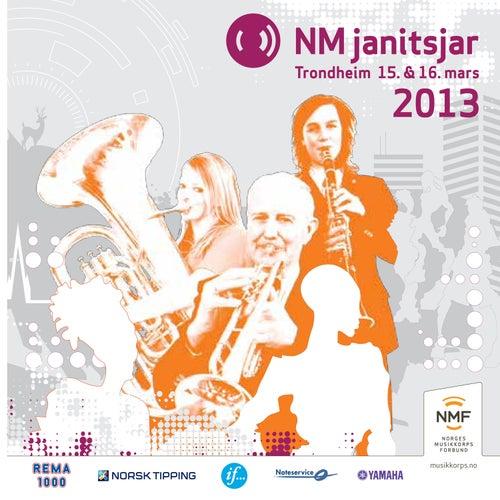 Nm Janitsjar 2013 - 3 Divisjon von 3 Divisjon