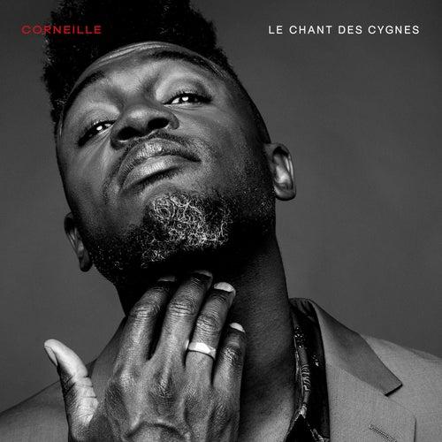 Le chant des cygnes von Corneille