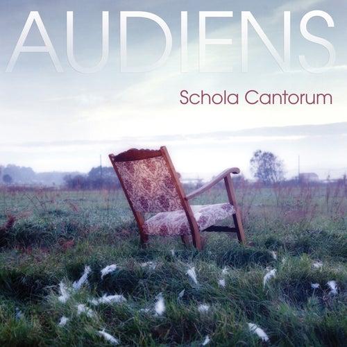 Audiens von Various Artists